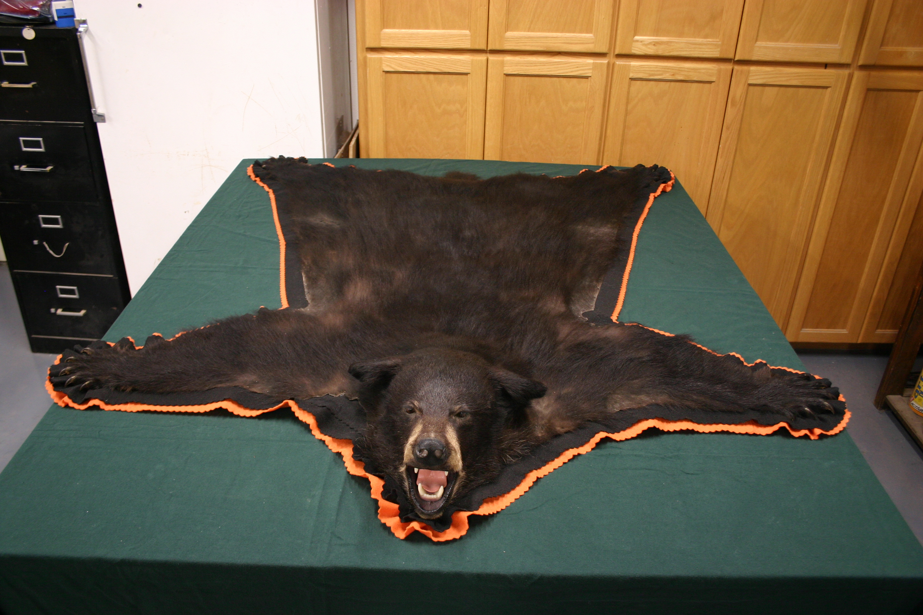 click the picture for the full size bear rug - Bear Rugs